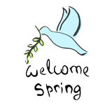Welcome Spring Lettering. Cute dove with a green twig Stock Photos