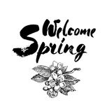 Welcome spring  lettering illustration. Hand drawn phrase. Handwritten modern brush calligraphy for invitation and greeting Royalty Free Stock Photos