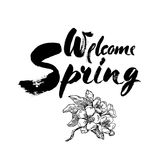 Welcome spring vector lettering illustration. Hand drawn phrase. Handwritten modern brush calligraphy for invitation and Royalty Free Stock Images