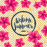 Welcome summer Royalty Free Stock Image