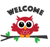 Welcome sweet owl Stock Photography