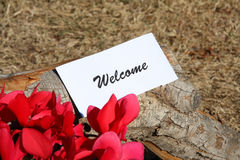 Welcome symbol. On the wood Royalty Free Stock Photo