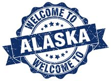 Welcome to Alaska seal Royalty Free Stock Photography
