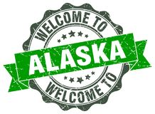 Welcome to Alaska seal Royalty Free Stock Image