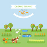 Welcome to farm. Organic farming poster template with cow, sheep, goose in pond and vegetable patches with corn, wheat, sunflower, pumpkin. Flat design style Royalty Free Stock Image