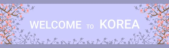 Welcome To Korea Travelling Destination Horizontal Poster With Beautiful Sakura Tree Flowers On Background. Flat Vector Illustration Royalty Free Stock Images