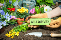 Welcome to my garden Stock Photography