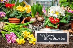 Welcome to my garden Royalty Free Stock Photo