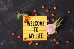 Welcome to my life text in memo stock photography