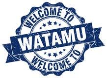 Welcome to Watamu seal Royalty Free Stock Photo