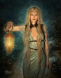 Welcome to the Woodland Realm. An elf princess lights up the path to the woodland area stock illustration