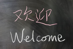 Welcome word in Chinese and English Royalty Free Stock Image