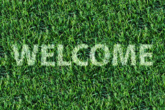 Welcome word on fresh green grass. Stock Photography
