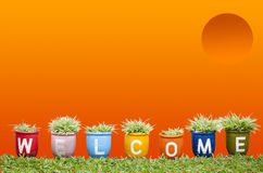 Welcome word made from Jardiniere Royalty Free Stock Photography