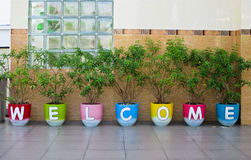 Welcome word made from Jardiniere. On wall background Royalty Free Stock Photo