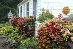 Welcoming cottage garden and birdhouse. Fall foliage and flowers grace the entryway of a country greenhouse with white shingles Royalty Free Stock Photography