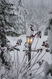Welcoming warm yellow light shining in snowstorm Stock Photography