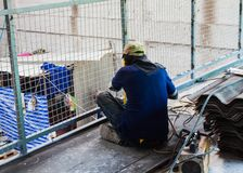 Welder man welding steel structure  wire mesh. For construction Stock Images