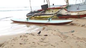 WELIGAMA, SRI LANKA - MÄRZ 2014: Boot auf dem Strand in Weligama Der Ausdruck Weligama bedeutet buchstäblich 'sandiges Dorf' das  stock video footage