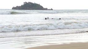 WELIGAMA, SRI LANKA - MÄRZ 2014: Die Ansicht des Ozeans in Weligama mit den lokalen Jungen, welche die Wellen genießen Das Ausdru stock footage