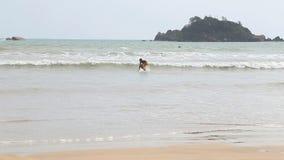 WELIGAMA, SRI LANKA - MÄRZ 2014: Die Ansicht eines Surfers im Ozean in Weligama Der Ausdruck Weligama bedeutet buchstäblich 'sand stock video