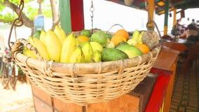 WELIGAMA, SRI LANKA - MÄRZ 2014: Schließen Sie herauf die Ansicht des Obstkorbes schwingend im Wind in Weligama Tropische Frucht  stock video