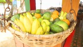WELIGAMA, SRI LANKA - MÄRZ 2014: Schließen Sie herauf die Ansicht des Obstkorbes schwingend im Wind in Weligama Tropische Frucht  stock video footage