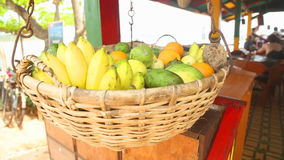 WELIGAMA, SRI LANKA - MARCH 2014: Close up view of fruit basket swinging in the wind in Weligama. Tropical fruit is available all  stock video
