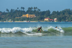 WELIGAMA SRI LANKA, STYCZEŃ, - 09 2017: Niezidentyfikowany mężczyzna surfing Obrazy Stock