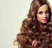 Well cared, dense and strong womans hair. Beautiful model brunette with long and lush curled hairstyle. Well cared, dense and strong womans hair stock image