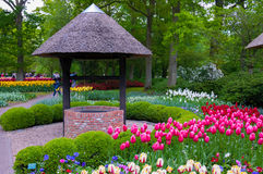 Well with colorful tulips , Keukenhof Park, Lisse in Holland Stock Image