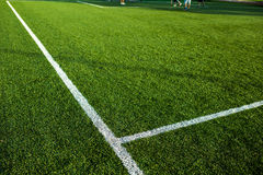 Well cut grass of a soccer field Royalty Free Stock Photos