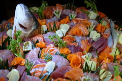 Well decorated Sashimi for all of us!. A big and powerful Sashimi feast! Who can resist the temptation Royalty Free Stock Photography