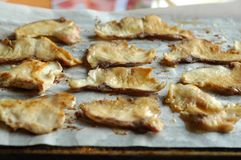 Well-done fish in BBQ. Some well-done sliced fish in BBQ Stock Photography