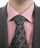Well dressed business man... Well dressed business man adjusting his tie for a meeting Stock Photos