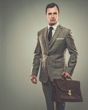 Well-dressed businessman Royalty Free Stock Image