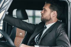 Well-dressed customer choosing new premium car at a dealership showroom.  Royalty Free Stock Images