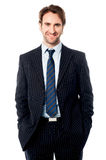 Well dressed male business executive Stock Image