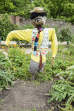 Well dressed scarecrow Stock Images