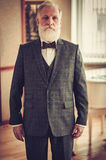 Well-dressed senior man in luxury interior Royalty Free Stock Photography