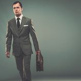 Well-dressed young businessman Royalty Free Stock Images