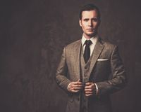 Well-dressed young businessman Stock Photography
