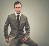 Well-dressed young businessman Stock Photos