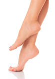 Well groomed female feet Stock Photography