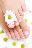 Well-groomed female feet with beautiful toenails royalty free stock photography