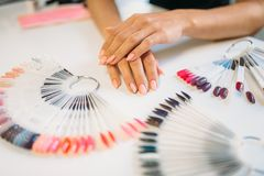 Well-groomed female hands against nail sample fan. On white table. Manicure art designs set, colorful collection in beauty salon royalty free stock image