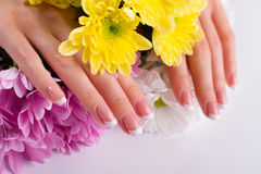 Well-groomed female hands with manicure. Stock Photo