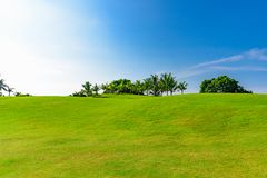 Well-groomed field lawn green grass playing golf. Well-groomed field lawn green grass for playing golf royalty free stock image