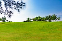 Well-groomed field lawn green grass playing golf. Well-groomed field lawn green grass for playing golf royalty free stock photography