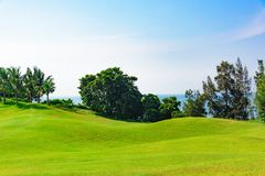 Well-groomed field lawn green grass playing golf stock image